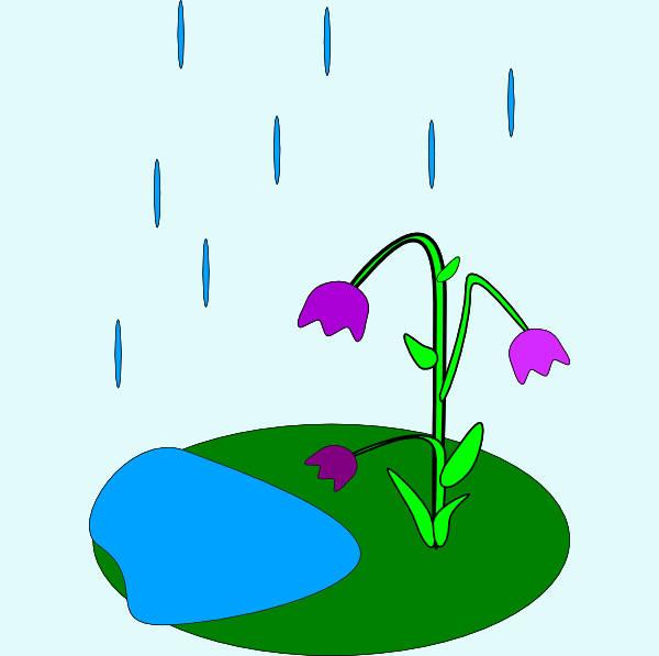 Spring Rain Clipart
