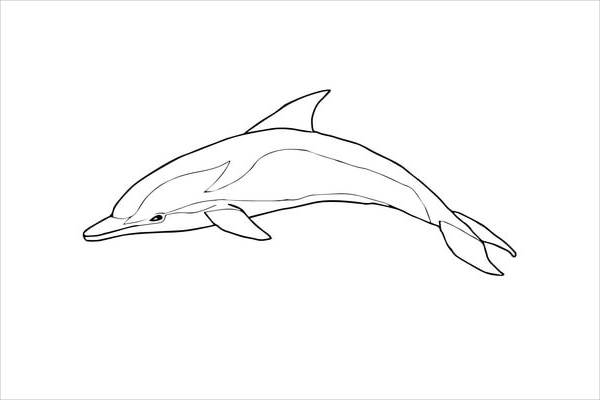 Striped Dolphin Coloring Page