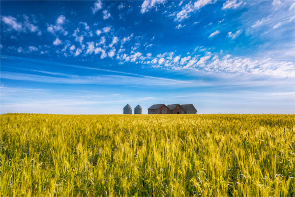 summer landscape photography
