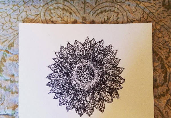 Sunflower Head Drawing