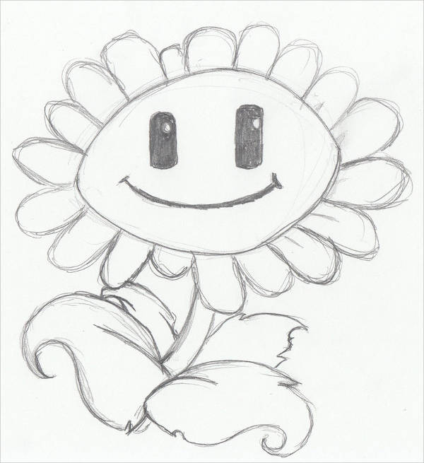 Sunflower Plant Drawing
