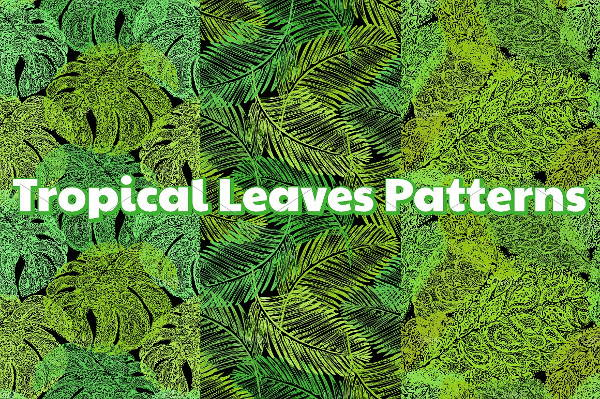 Tropical Leaf Pattern