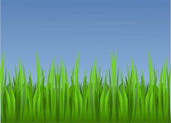 Vector Grass Clipart