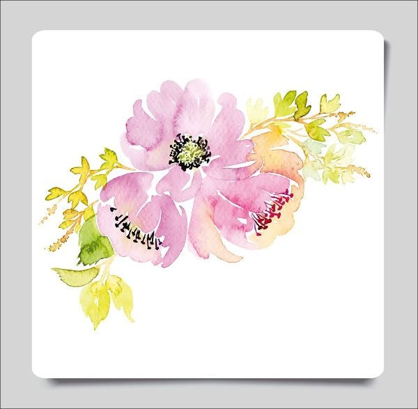 Watercolor Vector Flower Illustration