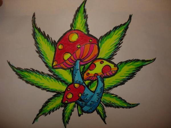 Weed Leaf Drawing