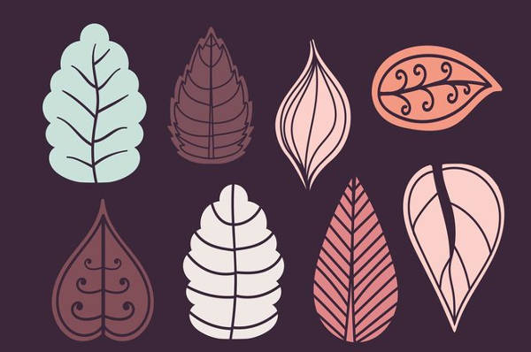 Winter Leaf Vector