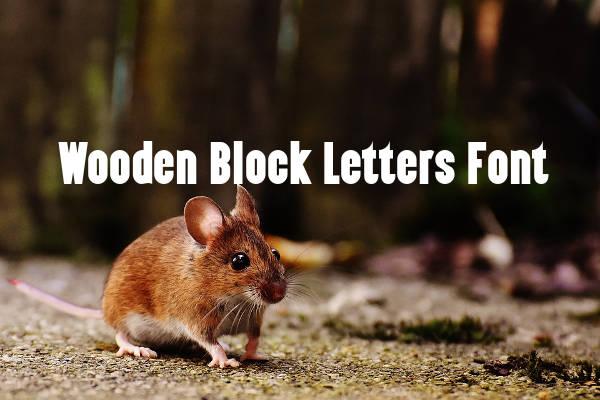 Wooden Block Letters Font