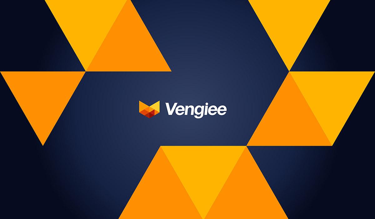 Vengiee Branding
